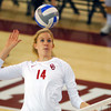 OU's Sallie McLaurin (14) gets ready to spike the ball Wednesday during the Sooners' match against Kansas State at the McCasland Field House. <br /> Kyle Phillips/The Transcript
