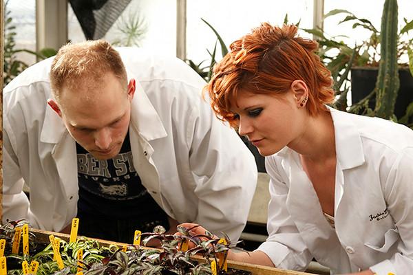 Botany propagation photos