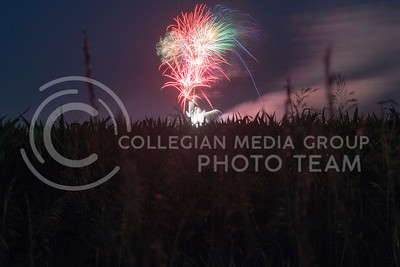 Fireworks from the Wamego show are seen from field North of Highway 24 on June 4, 2016. (Evert Nelson | The Collegian)