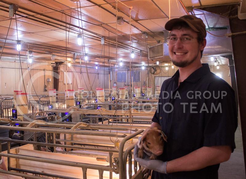 Dylan Goeckel, senior in agribusiness, holds a piglet inside the farrowing house at K-State's swine teaching and research center on Feb. 27, 2017. Dylan is one of the many K-State students who works with the animals regularly. (Regan Tokos | The Collegian)