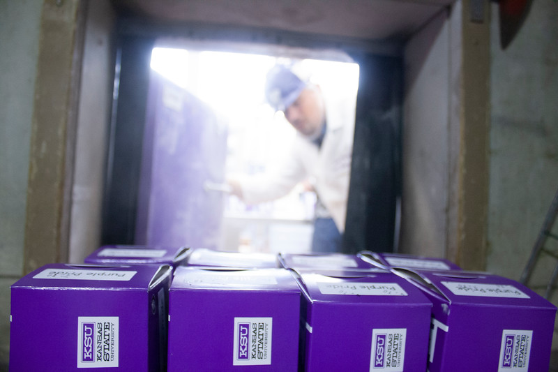 Jared Parsons, dairy plant manager, uses a walk-in freezer to solidify freshly churned purple pride ice cream at Call Hall's dairy plant, on Tuesday, April 24, 2018. (Tiffany Roney | Collegian Media Group)