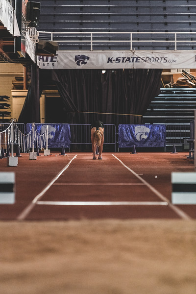 K-State junior Lauren Taubert stretches before competing in the women's long jump during the Carol Robinson/Attila Zsivoczky Pentathlon in Ahern on December 7, 2018. (Alex Todd   Collegian Media Group)