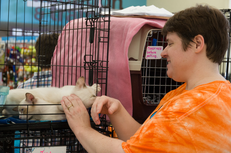 Wendy Howard, Secretary at Cattails and a cat fosterer, plays with some of her cats at the Cattails adoption event on Saturday, June 7 at Petco in Manhattan, Kansas. (Alex Masson | Collegian Media Group)