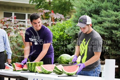 Jacob Winkel, senior in wildlife and outdoor enterprise management, and Bret Gum, junior in agriculture economics, slice the watermelon at the annual watermelon feed hosted by the College of Agriculture to serve to students as they browse the different agriculture organizations on Aug. 30, 2016, at Weber Arena. The watermelon feed was hosted to help new students join in organizations and clubs in the agriculture department. (Alanud Alanazi | The collegian)