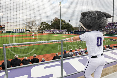 Willie the Wildcat watches the K-State baseball game against Eastern Illisnois University at Tointon Family Stadium on Mar. 5, 2017. (John Benfer | The Collegian)