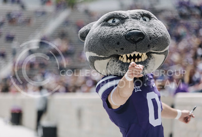 Willie the Wildcat poses for a photo during the spring game in Bill Snyder Family Stadium on April 22, 2017. (Emily Starkey | The Collegian)