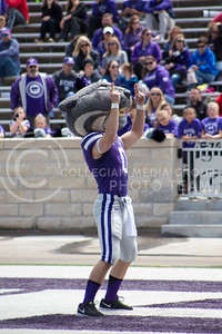 Willie the Wildcat pumps up the fans during the spring game in Bill Snyder Family Stadium on Apr. 22, 2017 (Maddie Domnick | The Collegian)