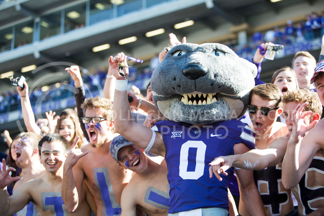 Willie the Wildcat shakes keys at kickoff of the football game between K-State and Texas in Bill Snyder Family Stadium on Oct. 22, 2016. (Emily Starkey   The Collegian)