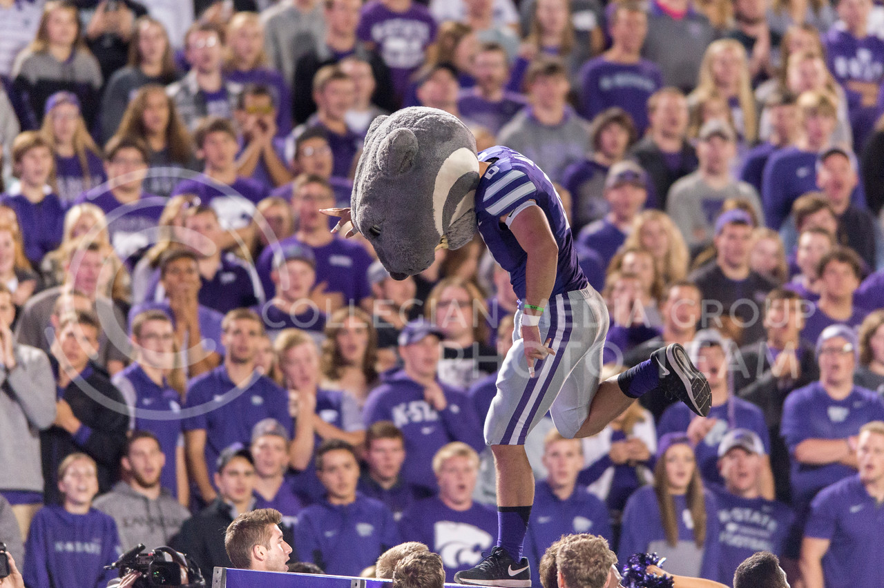 """Willie the Wildcat makes an """"S"""" during the game between K-State and Texas Tech on Oct. 8, 2016, in Bill Snyder Family Stadium. (George Walker 