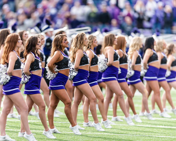The line of Kansas State's Classy Cats hold their form while waiting for their next number during K-State's pre-game show. On Saturday, the Kansas State Wildcats faced off against the Oklahoma State Cowboys and won with a final score of 31-12 at Bill Snyder Family Stadium. (Olivia Bergmeier | Collegian Media Group)
