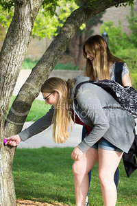 Paige Rome, freshman in advertising, and Sarah Wars, freshman in life science, hunt for easter eggs around campus on April 13, 2017. (Maddie Domnick | The Collegian)