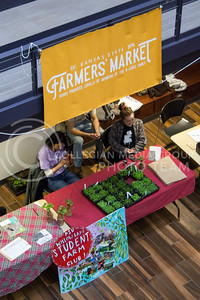 Students participate in a farmers' market in the K-State Student Union on March 29, 2017. (Maddie Domnick | The Collegian)