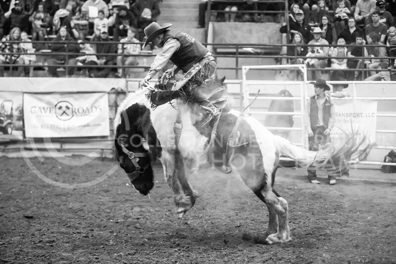 K-State hosts its 64th Annual College Rodeo in Weber Arena on Feb. 15, 2020. The rodeo brought over 500 contestants from 19 colleges and universities from the Central Plains Region over the weekend. On the night of the 15th, 4,000 people were in the bleachers cheering on their favorite riders. (Logan Wassall | Collegian Media Group)