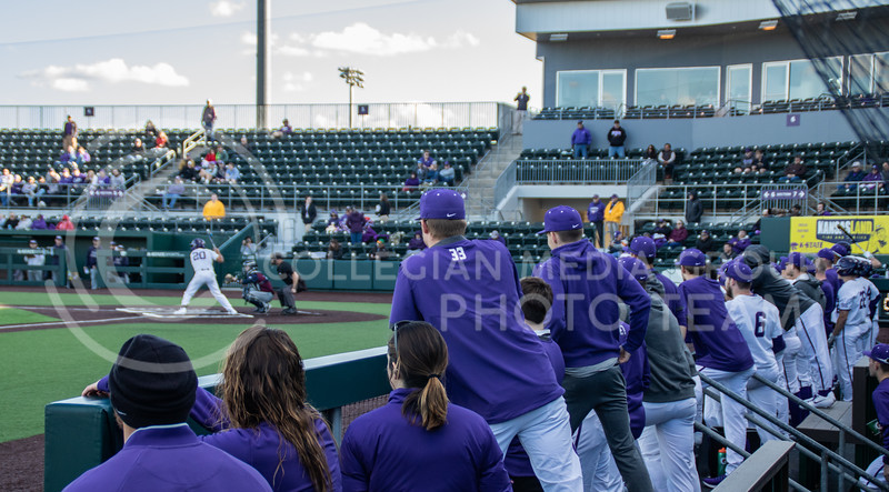 The wildcats in the dug out looking towards the batter during the 8th inning. (Sreenikhil Keshamoni | Collegian Media Group)
