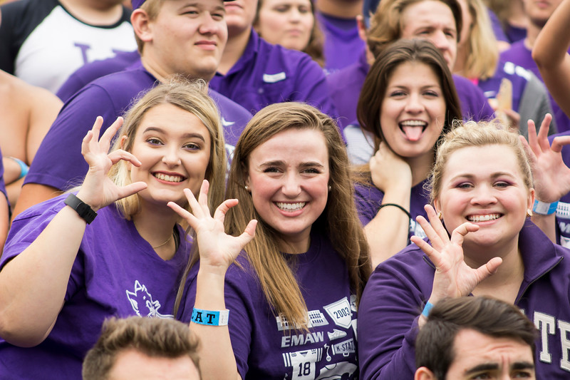 Kansas State fans show their spirit in the student section at Bill Snyder Family Stadium on Sept. 8, 2018. The Wildcats lost to the MSU Bulldogs 31-10. (Andrea Klepper | Collegian Media Group)