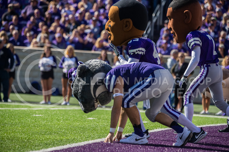 Willie the Wildcat races K-State Legends at game against the TCU Horned Frogs. The Wildcats beat TCU 24-17. ( Dalton Wainscott I Collegian Media Group )