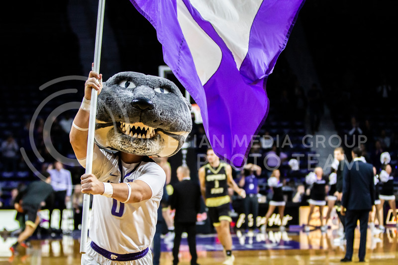 Willie Wildcat leads K-State fans in cheering on their basketball team before their home opener against ESU in Bramlage Coliseum on Oct. 25, 2019. The Wildcats held the Hornets 86-49. (Michaela Wassall | Collegian Media Group)