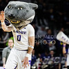 Willie the Wildcat encourages the student section to cheer on the boys' during the game against Texas in Bramlage Coliseum on Feb. 21. The Wildcats took the Longhorns 58-48. (Meg Shearer   Collegian Media Group)