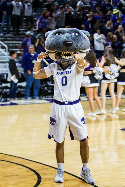 Willie Wildcat leads K-State fans in cheering on their men's basketball team in their game against Pittsburg State in Bramlage Coliseum on Nov. 2, 2018. The Wildcats took the Gorillas 79-39. (Logan Wassall | Collegian Media Group)