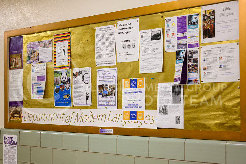 Billboard in The department of modern languages, Eisenhower Hall. Feb 3, 2019.(Dylan Connell   Collegian Media Group)