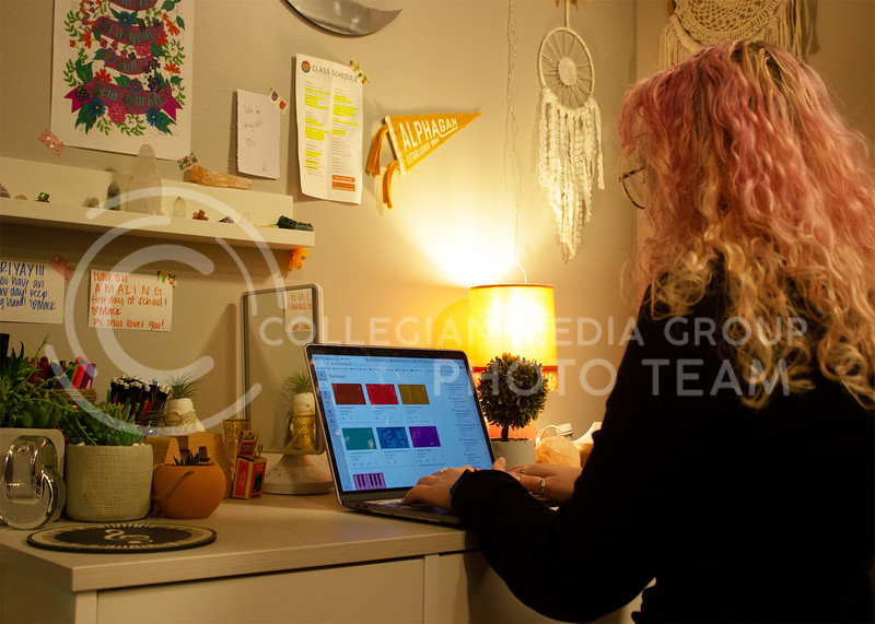 Emma Iacovella, sophomore in music education, checks her Canvas homepage to begin the night's work of assignments. (Paige Eichkorn | Collegian Media Group)