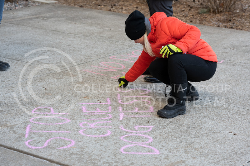 Animal rights activist chalk the sidewalk outside of Trotter Hall at Kansas State University to spread awareness on the dog testing labs located at Texas A&M. 02/20/20. (Dylan Connell | Collegian Media Group)