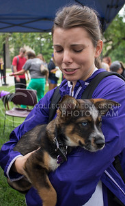 Julie Cooper, junior in biochemistry, holds a puppy named Lucas during the Pet Away Stress event hosted by Counseling Services and Purple Power Animal Welfare Society in the Quad on Aug. 24, 2016. (Miranda Snyder | The Collegian)