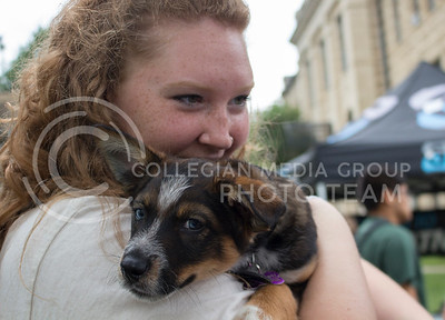 Hattan Mollnow, freshman in microbiology, holds a puppy named Lucas during the Pet Away Stress event hosted by Counseling Services and Purple Power Animal Welfare Society in the Quad on Aug. 24, 2016. (Miranda Snyder | The Collegian)