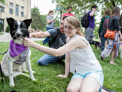 Petting Snoppy, an Austraillian Shepard Mix, Brett Homme, junior in animal science, and Sam Starr, sophomore in biology, participate in the Pet Away Stress event, on Aug. 24, 2016. The event was held in the quad and sponsered by Counselling Services. (Mason Swenson | The Collegian)