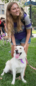 Mackenzie Yeager, sophomore in landscape architecture, pets a dog named Ester, who is up for adoption, during the Pet Away Stress event hosted by Counseling Services and Purple Power Animal Welfare Society in the Quad on Aug. 24, 2016. (Miranda Snyder | The Collegian)