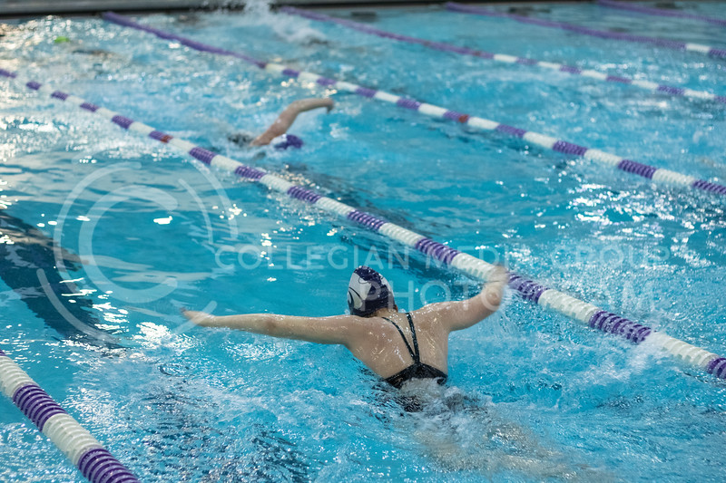 Anne Criddle, junior here at Kstate, performing the butterfly stroke with the K-State Swim Club on feb 24th, 2020. (Sreenikhil Keshamoni | Collegian Media Group)