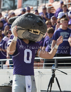 Willie the Wildcat during the pep rally at the BBVA Compass Stadium in Houston, Texas on Dec. 27, 2016. (George Walker   The Collegian)