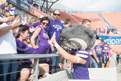 Willie the Wildcat gives a high-five during the pep rally at the BBVA Compass Stadium in Houston, Texas on Dec. 27, 2016. (George Walker | The Collegian)