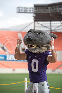 Willie the Wildcat makes a 'U' during the pep rally at the BBVA Compass Stadium in Houston, Texas on Dec. 27, 2016. (George Walker | The Collegian)