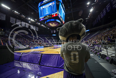 Willie the Wildcat watches the court during the volleyball game against Ohio State in Bramlage Coliseum on Dec. 3, 2016. (Nathan Jones | The Collegian)