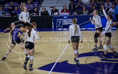 The K-State volleyball team celebrates winning a set during the volleyball game against Ohio State in Bramlage Coliseum on Dec. 3, 2016. (Nathan Jones | The Collegian)