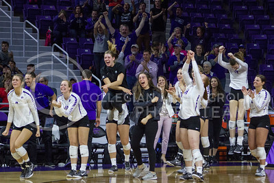 The team cheers on the sidelines after winning a point during the K-State game against Ohio State in Bramlage Coliseum on Dec. 3, 2016. (Maddie Domnick | The Collegian)