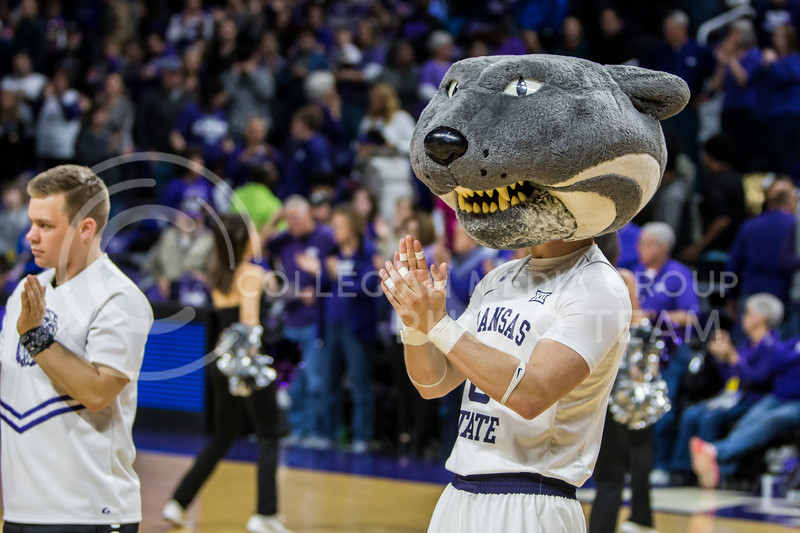 Willie Wildcat lead fans on in cheering against KU in Bramlage Coliseum on Feb. 24, 2018. The Wildcats defeated the Jayhawks 91-67. (Logan Wassall | Collegian Media Group)