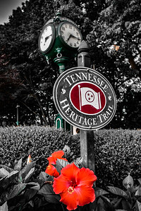 Collierville Town Square