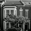 Terraced House with original sash windows, Collingwood Road, Northampton