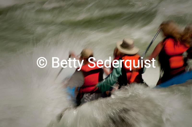 Rafting, South Fork American River