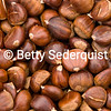 Chestnut Closeup