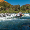 Whitewater Rafters, Troublemaker Rapid, Coloma