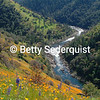 South Fork American River in Spring