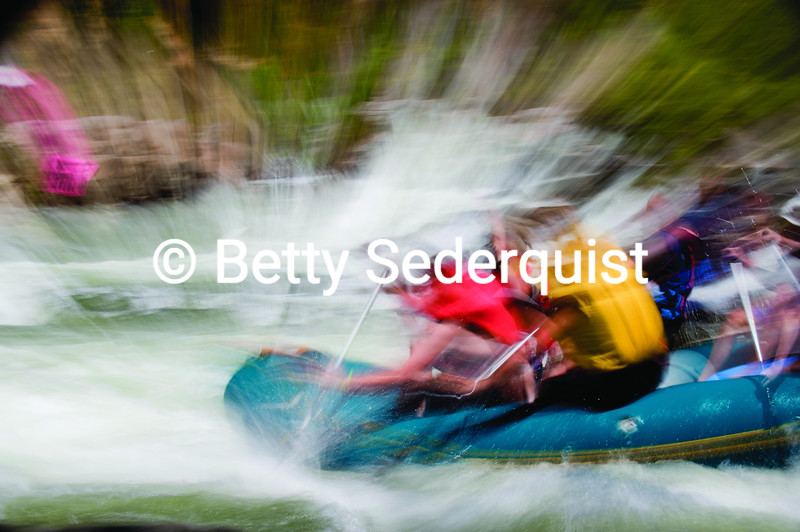 Rafters, South Fork American River