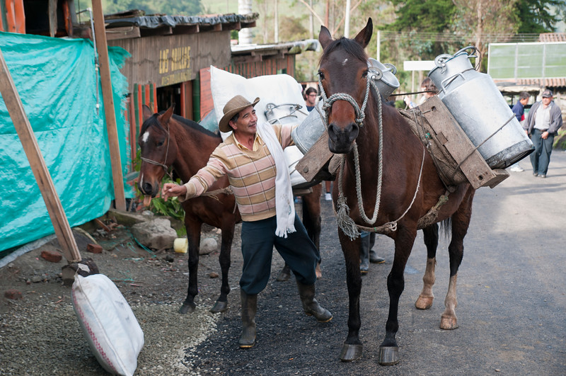 Unloading cargo from horse, Cocora, Colombia