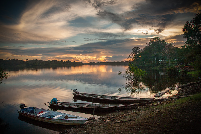 amazon sunset