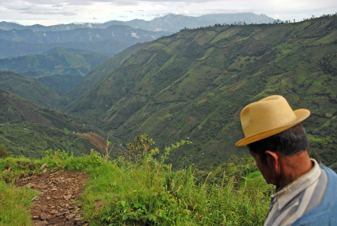 The road was at 7,000 feet and so we had to descend a steep foot trail a thousand feet just to get to the farms. Coffee cannot grow much beyond 6,000 feet because of excess cold.