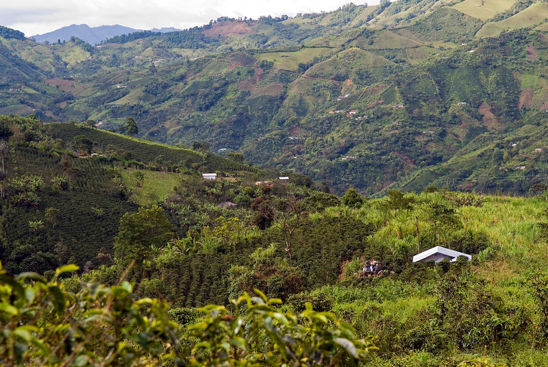 I visited El Cucho (Old Man), which Terroir Coffee was roasting in April 2009.
