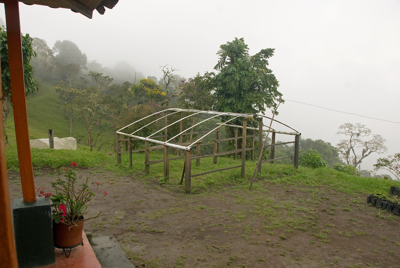 The structure was set up in 2008, a terrible year for Colombian farmers, a year of incessant rain which made drying coffee almost impossible in many places and dramatically reduced the crop.  The plastic covering had yet to be put up; perhaps Maria was plain exhausted. She has retired.